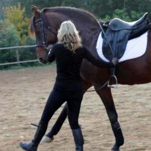 maria katsamanis horse clinics classical dressage art of horsemanship4 2 300x300